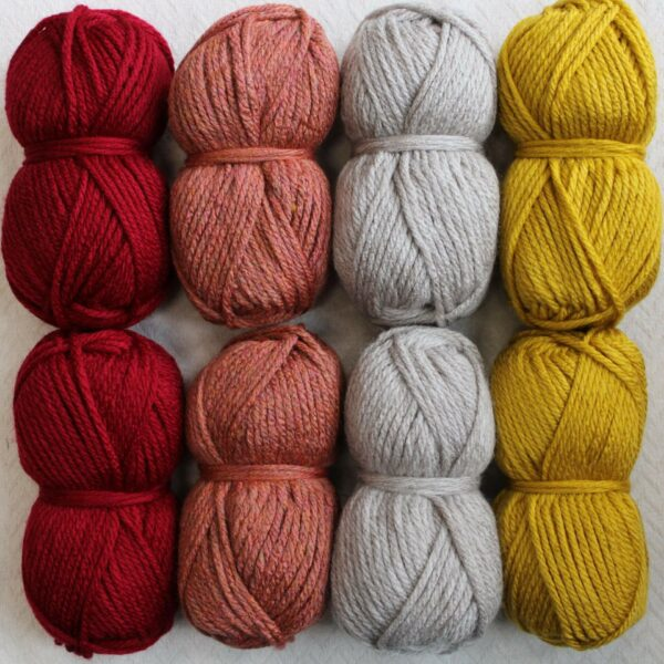 Moloneymakes Super Chunky Vegan Yarn Colour Pack in Colourway Warm