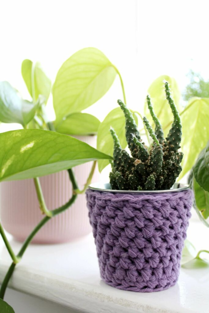 Mini crochet pot in lilac next to a devils ivy in a pink pot and other house plants