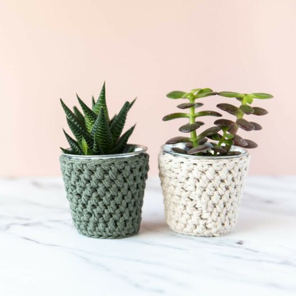 2 mini crochet pots with plants in khaki and sand