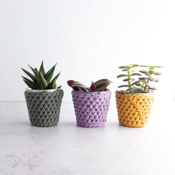 set of three mini crochet pots with plant in mustard, lilac and khaki